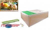 Господар  Ясли (брудер) для цыплят, Арт.: 92-0825