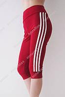 Молодежные женские шорты, леггинсы, капри, бриджи для спорта и отдыха! 4 цвета! красный