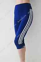 Молодежные женские шорты, леггинсы, капри, бриджи для спорта и отдыха! 4 цвета! синий