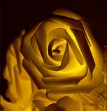 Светодиодная гирлянда Желтые Розы 2м 20LED на батарейках АА, фото 5
