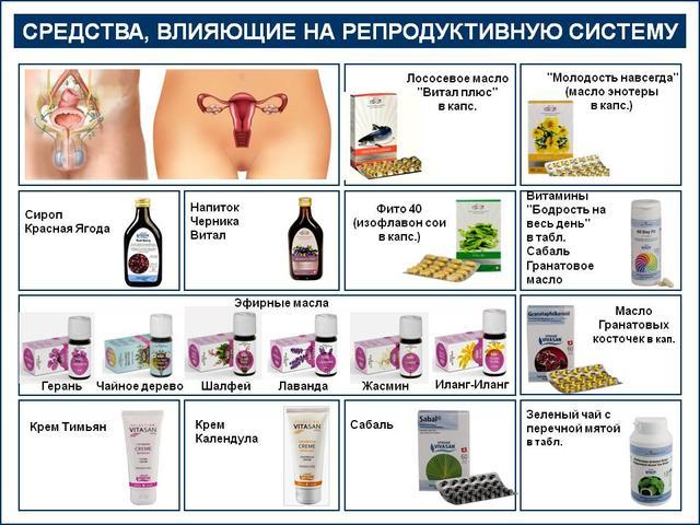 Вивасан при заболеваниях репродуктивной системы_vivasan-planet.com