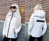 Курточка Philipp Plein  Ткань лаке на силиконе  Очень классная  Внутри на резинке можно регулировать  Ка(21135