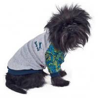 Толстовка для собаки Фил S, Длина спины: 27-30см, обхват груди: 32-40см  (цвета разные)
