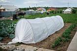 Парник Presto-PS Мини теплица длинна 6 м. плотность агроволокна 60 г/м ширина парника 80 см высота 120 см, фото 2