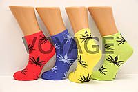 Стрейчевые женские компютерные носки MONTEBELLO