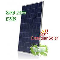 Canadian Solar CS6P270 солнечные панели (батареи) поликристалл 270 Вт, фото 1