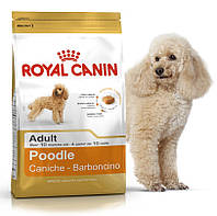Royal Canin Poodle Adult 1.5 кг