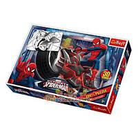 Пазлы макси контурные «Marvei Spiderman» 14407 Trefl, 30 деталей