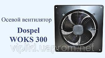 Вентилятор DOSPEL WOKS 300 промышленный вытяжной осевой