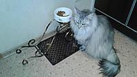 Подставка под миски для собак/котов, фото 1