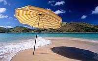 Торговые и пляжные зонты