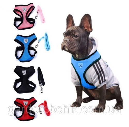 """Мягкая шлейка """"Чемпион"""" для собак, кошек. Одежда для собак, кошек"""