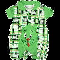 Песочник-футболка с воротником поло, в клетку с вышивкой, хлопок (кулир), ТМ Лио, р. 68, 74, 80, 86, Украина, фото 1