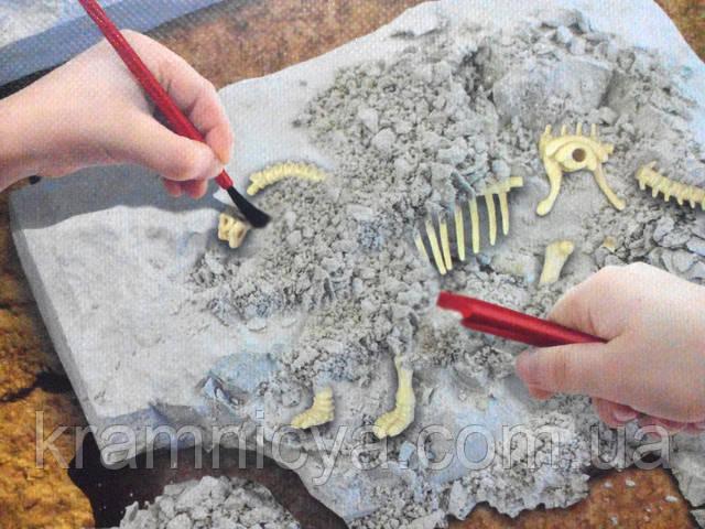 Раскопки динозавров купить