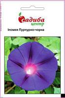 Пурпурно-чорна 0,5г  Іпомея