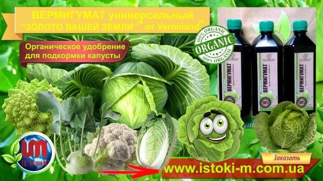 подкормка капусты органическим удобрением