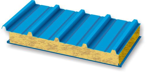 Кровельные сэндвич панели 50 мм. с минеральной ватой RAL/RAL