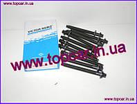 Болты ГБЦ комплект Peugeot Partner  I 1.9D DW8 Victor Reinz Германия 14-32116-01