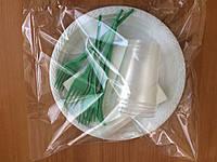 Набор одноразовой посуды на 6 персон с большой тарелкой