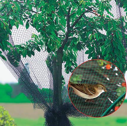 Сетка для защиты ягод от птиц BIRD NET 8х8м, фото 2