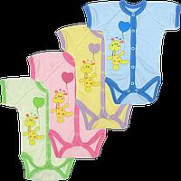 Детский боди-футболка с принтом на кнопках, хлопок (кулир), ТМ Свит Марио, р. 56, 62, 68, 74, 80, Украина