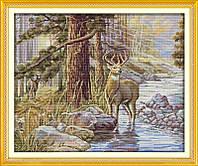 Гордый олень Набор для вышивки крестом с печатью на ткани 14ст