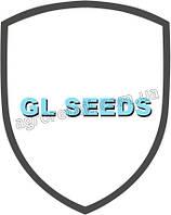 Семена табака GL Seeds