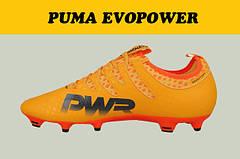 Бутсы Puma evoPOWER