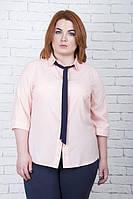 Офисная блуза большого размера БАНТ пудра  ТМ Ирмана 50-56 размеры
