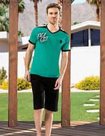 Мужской комплект футболка и шорты SHIRLI