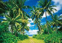 Фотообои бумажные на стену 366х254 см 8 листов: природа, Тропики