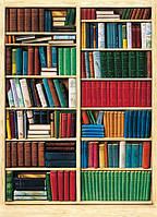 Фотообои бумажные на стену 183х254 см 4 листа: Книжный шкаф