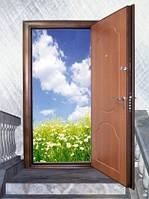 """Двери входные, металлические, бронированные модель """"Элит""""."""