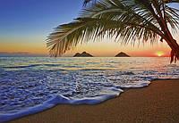 Фотообои флизелиновые на стену 366х254 см 8 листов: природа Тихий океан