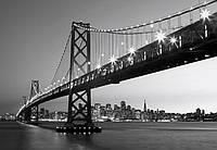 Фотообои флизелиновые на стену 366х254 см 8 листов: ночной город мост Сан-Франциско