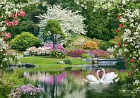 Фотообои из плотной бумаги на стену 276*192 см , 16 листов, Животные, Весенний Парк