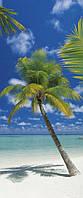 Фотообои на плотной полуглянцевой бумаге для стен 92*220 см из 2 листов: Пальмы и море