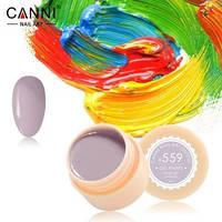Гель-краска Canni №559 светлая лилово-серая