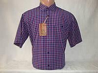 Мужская рубашка с коротким рукавом в клетку Nens, Турция