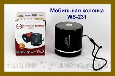 Bluetooth портативная колонка WS-231
