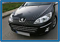 Защита переднего бампера Peugeot 407 SD, SW (2004-2010) нерж. Omsa