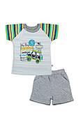 Костюм для малыша: шорты и футболка