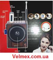 Мобильная система звукоусиления для гида BiG GIDmini