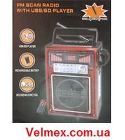 Мобильная система звукоусиления для гида BiG GIDwireless