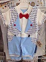 Детский бодик  костюм с бабочкой Турция( ассортимент цветов) оптом