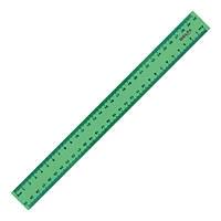 Линейка пластиковая Delta 30 см зеленая D9800-02