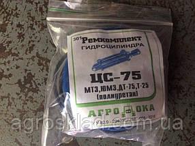 Ремкомплект для ремонта для гидроцилиндра ЦС-75 ЮМЗ,МТЗ,ДТ-75,Т-25