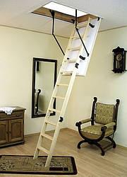 Чердачная лестница Oman LONG TERMO S H3,35 120х60 мм