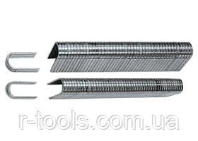 Скобы, 12 мм, для кабеля, закаленные, ТИП 36, 1000 шт MTX MASTER 414129