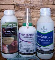 Инсектицид Кораген 20 к.с. (хлорантранилипрол 200 г/л)